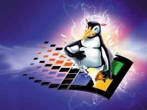 """Eterna""""briga"""" entre os usuários de Linux X Windows."""